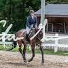 BRV Charity Horse show-8872