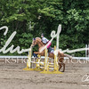 BRV Charity Horse show-8758