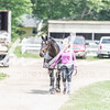 BRV Charity Horse show-8615