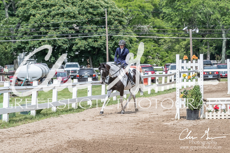 BRV Charity Horse show-9188