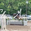 BRV Charity Horse show-8530