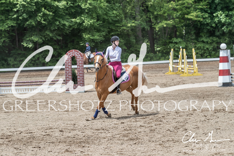 BRV Charity Horse show-8769