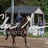BRV Charity Horse show-9180