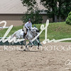 BRV Charity Horse show-8892