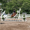 BRV Charity Horse show-9339