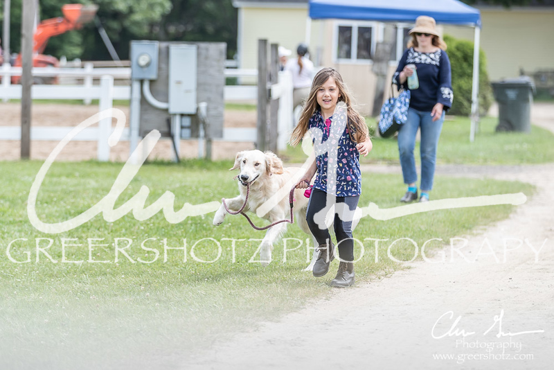 BRV Charity Horse show-9157