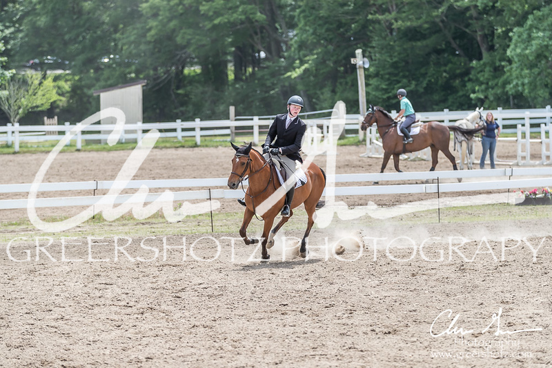 BRV Charity Horse show-8991