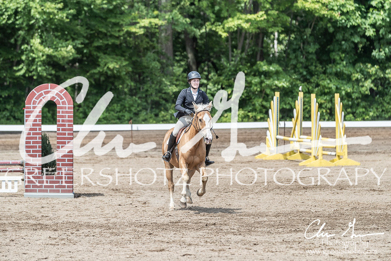BRV Charity Horse show-8505