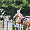 BRV Charity Horse show-8782