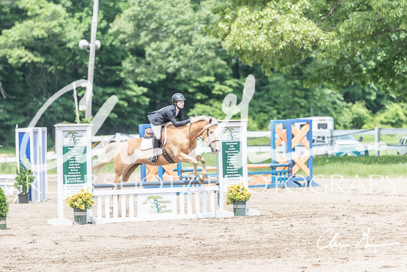 BRV Charity Horse show-8612