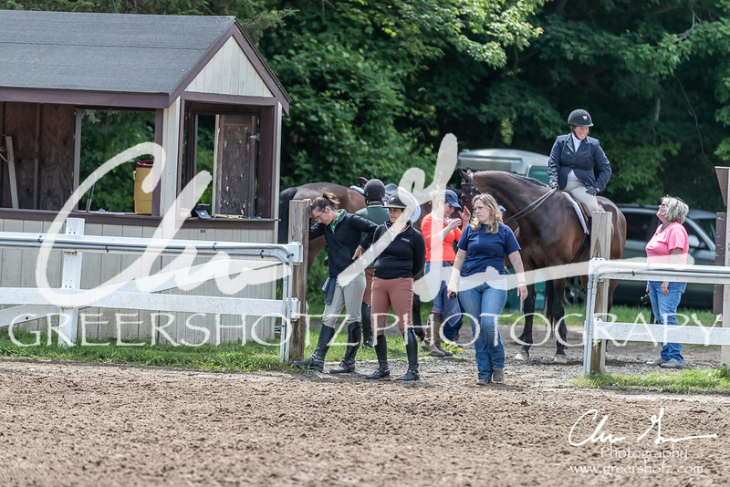 BRV Charity Horse show-8555