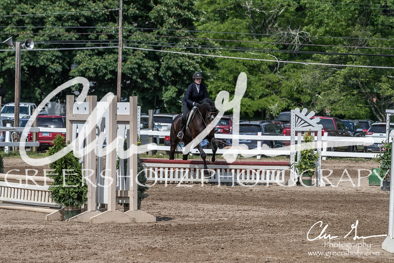 BRV Charity Horse show-9245