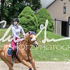 BRV Charity Horse show-8776