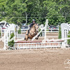 BRV Charity Horse show-9214