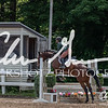 BRV Charity Horse show-8487