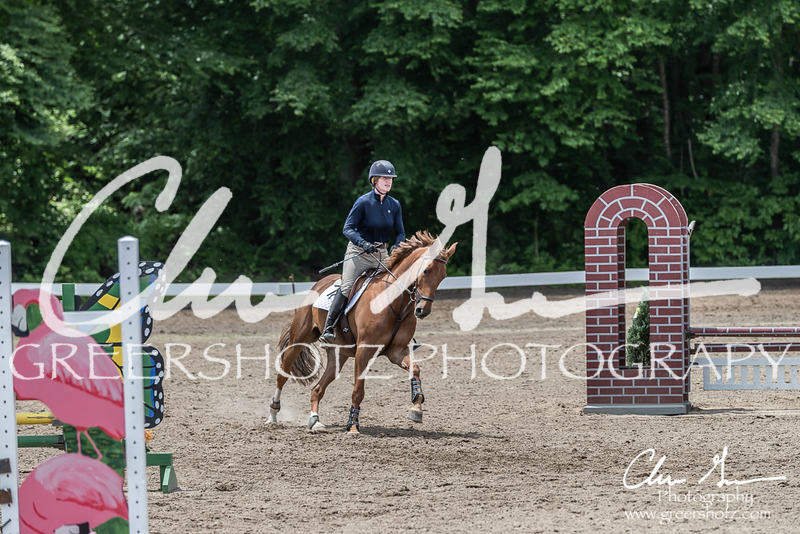 BRV Charity Horse show-8932