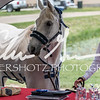 BRV Charity Horse show-9022