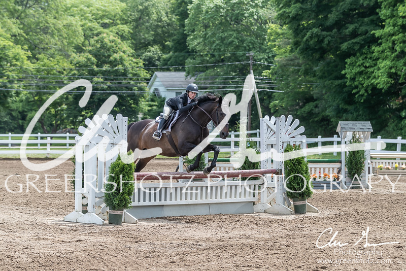 BRV Charity Horse show-8551
