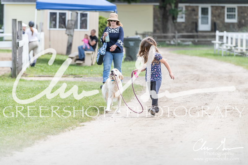 BRV Charity Horse show-9136