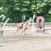 BRV Charity Horse show-8593