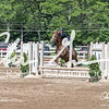BRV Charity Horse show-9207
