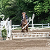 BRV Charity Horse show-9193