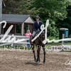 BRV Charity Horse show-8909