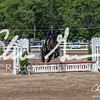 BRV Charity Horse show-9235