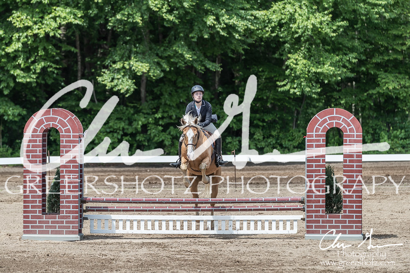 BRV Charity Horse show-8493