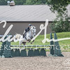 BRV Charity Horse show-9271