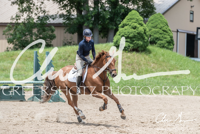 BRV Charity Horse show-8941