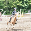 BRV Charity Horse show-8606