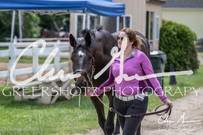 BRV Charity Horse show-8739