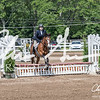 BRV Charity Horse show-9204