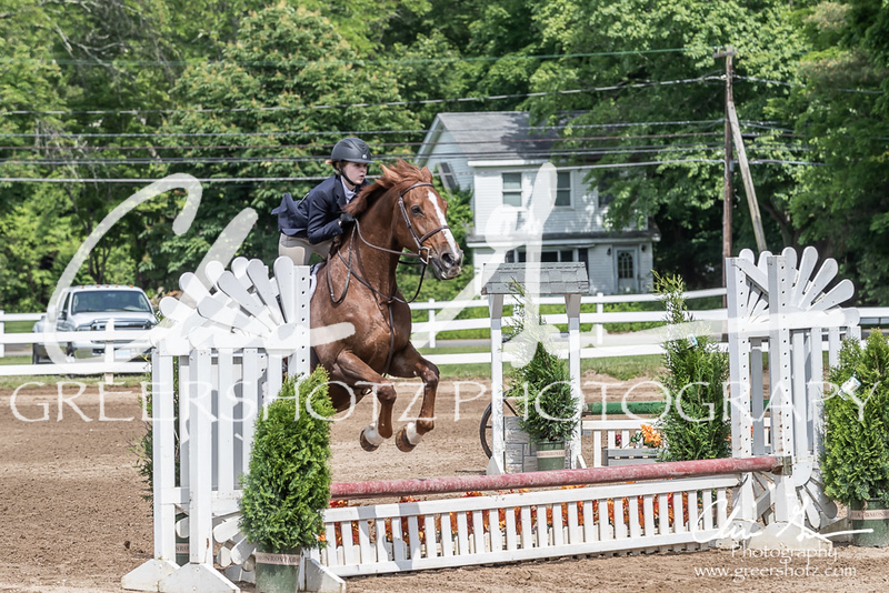 BRV Charity Horse show-9194