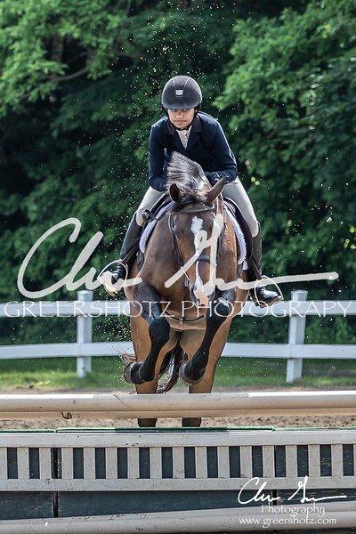 BRV Charity Horse show-8465