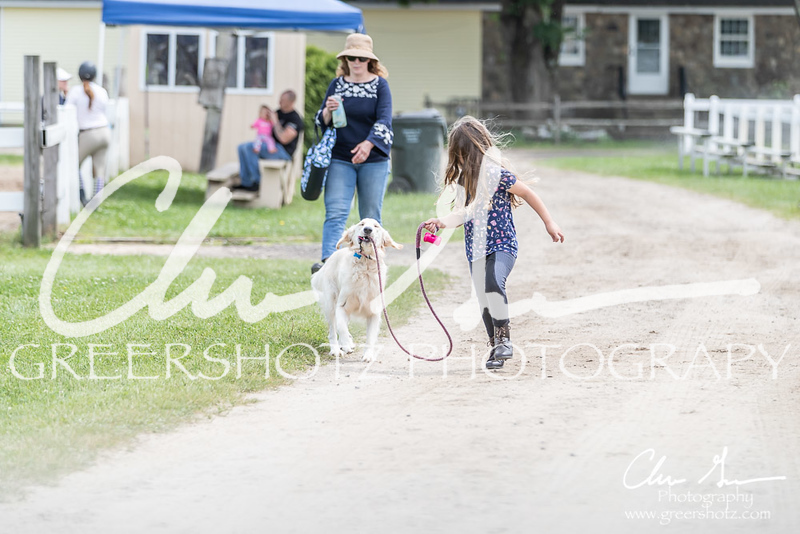 BRV Charity Horse show-9135