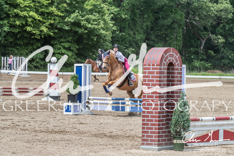 BRV Charity Horse show-8765