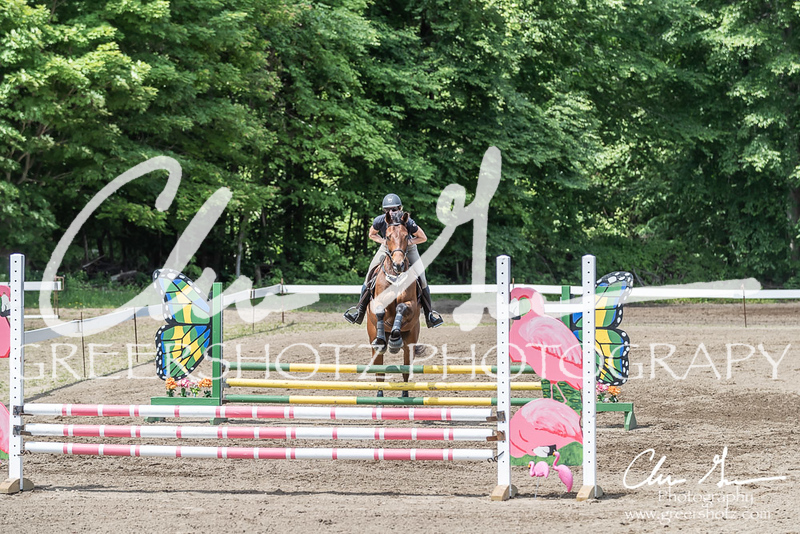 BRV Charity Horse show-8480