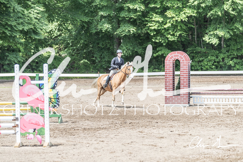 BRV Charity Horse show-8591