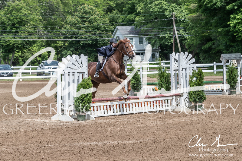 BRV Charity Horse show-9182
