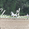 BRV Charity Horse show-9042