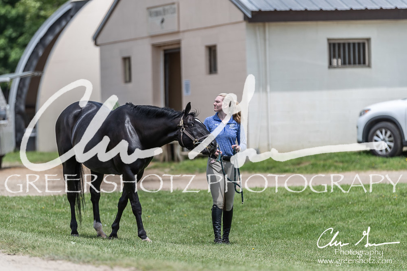 BRV Charity Horse show-8883