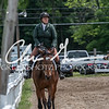 BRV Charity Horse show-8660