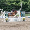 BRV Charity Horse show-8725