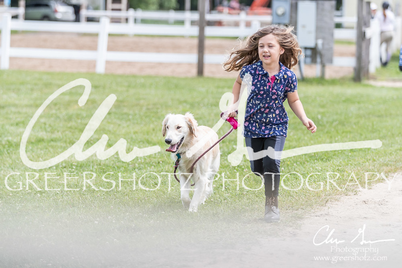 BRV Charity Horse show-9160