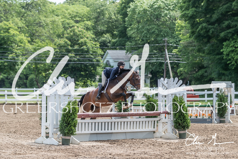 BRV Charity Horse show-8542