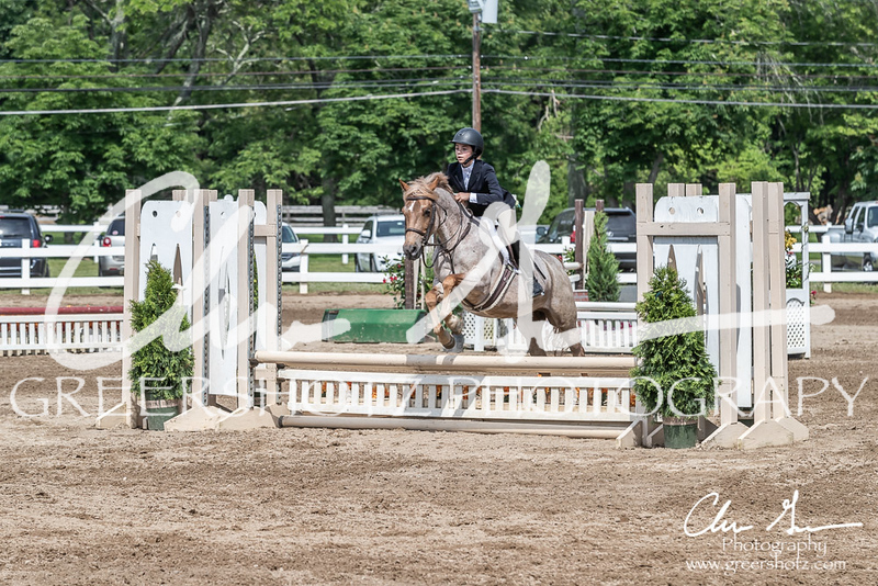 BRV Charity Horse show-9227