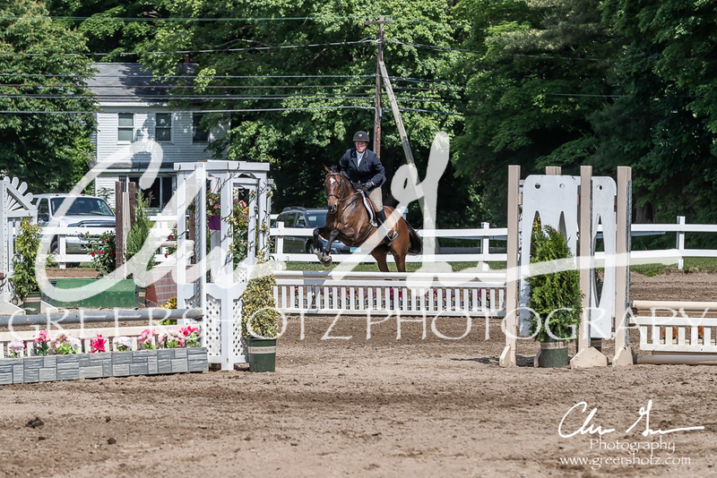 BRV Charity Horse show-9236