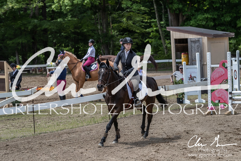 BRV Charity Horse show-8719